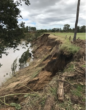 Flood effects following ex-tropical cyclone Debbie on an eroded streambank adjacent to the Queensland Urban Utilities offset